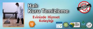 potema_hali_kuru