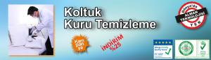 potema_koltuk_kuru